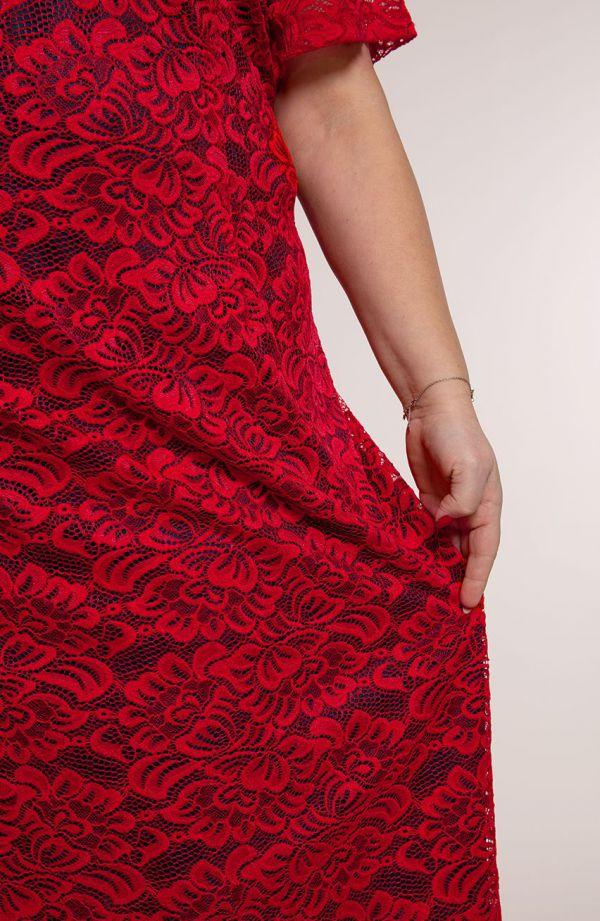Czerwono granatowa koronkowa sukienka krótki rękaw- sukienki plus size